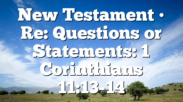 New Testament • Re: Questions or Statements: 1 Corinthians 11:13-14