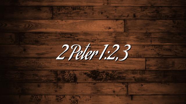 2 Peter 1:2,3
