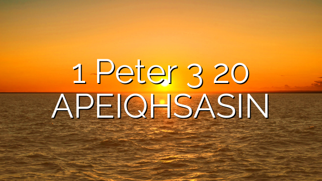 1 Peter 3 20  APEIQHSASIN